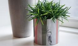 En urtepotteskjuler-skjuler