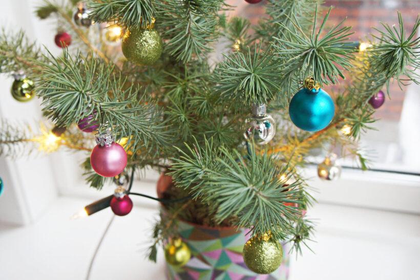 StyleDesignCreate: Juletræ